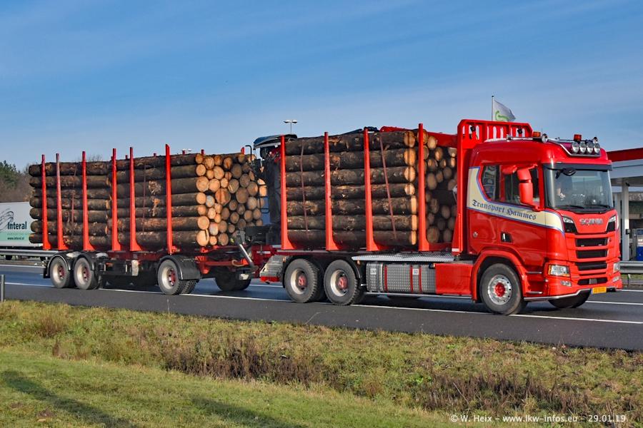 20190622-Holztransporter-00002.jpg