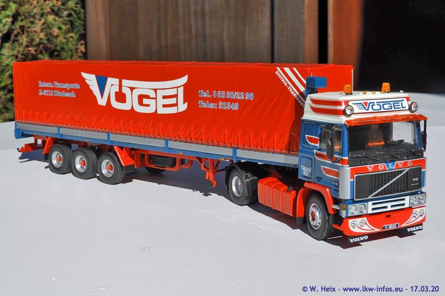20200317-Voegel-00035.jpg