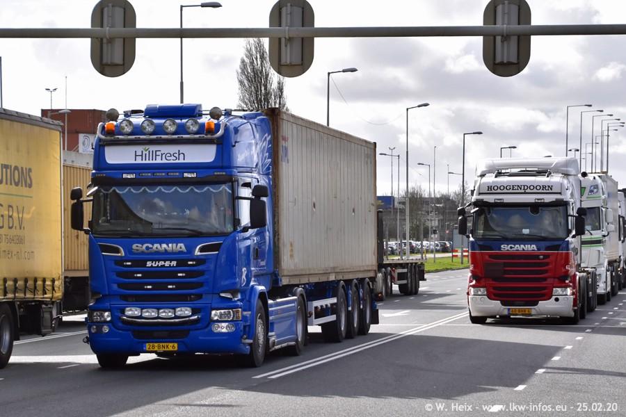 20200801-Rottredam-Containerhafen-00517.jpg