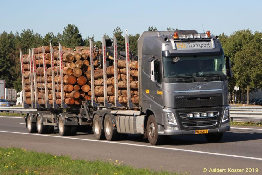 20210107-Holztransporter-00007.jpg