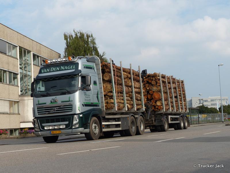 20210107-Holztransporter-00017.jpg