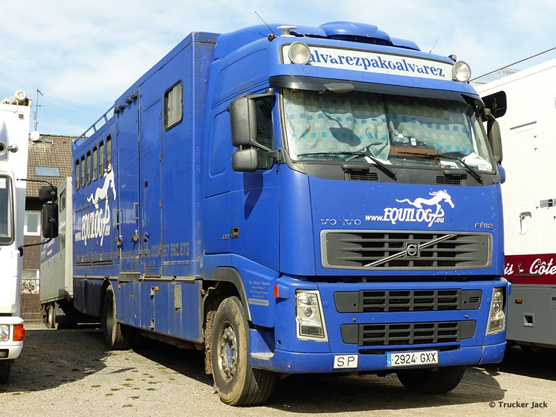 20171105-Pferdetransporter-00013.jpg