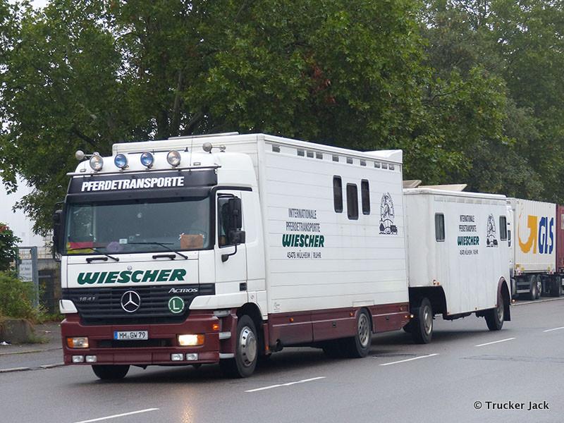20210107-Pferdetransporter-00013.jpg