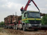 20160101-Holztransporter-00006.jpg