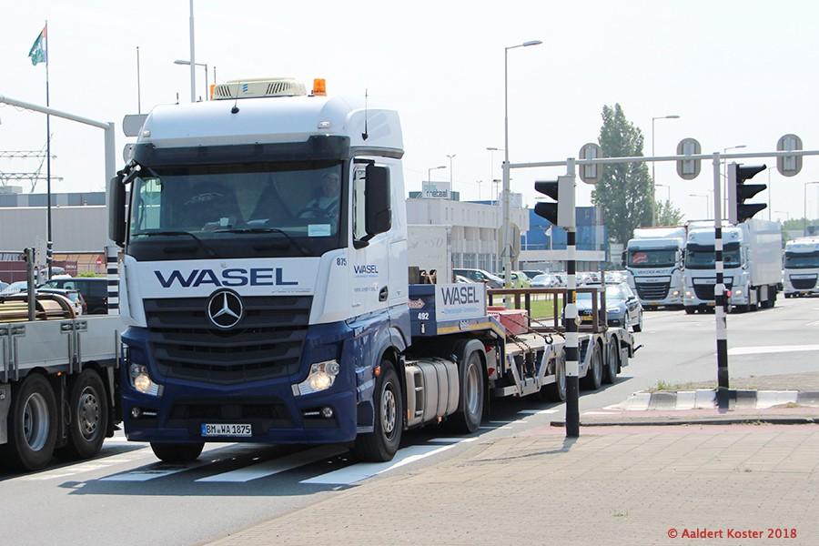 20210327-Wasel-00008.jpg