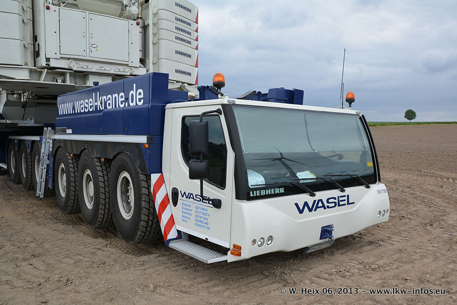 Wasel-20160719-00019.jpg