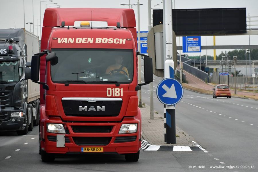 20180908-Bosch-van-den-00001.jpg