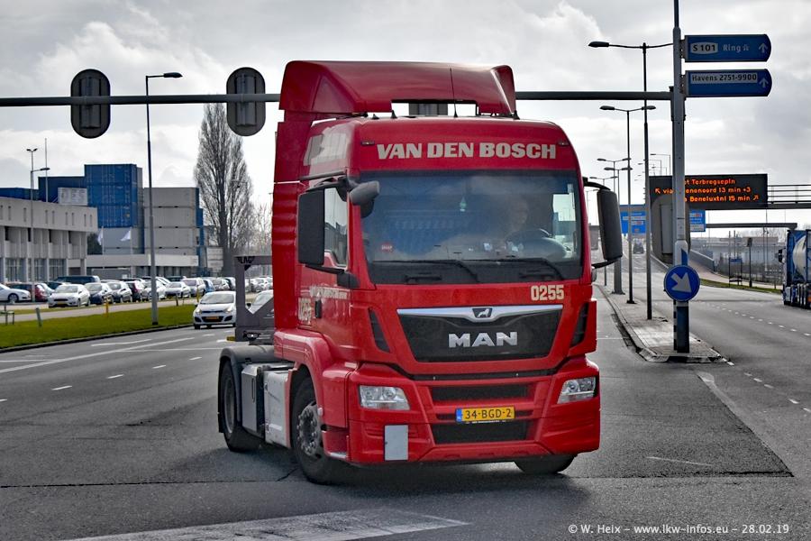 20190303-Bosch-van-den-00009.jpg