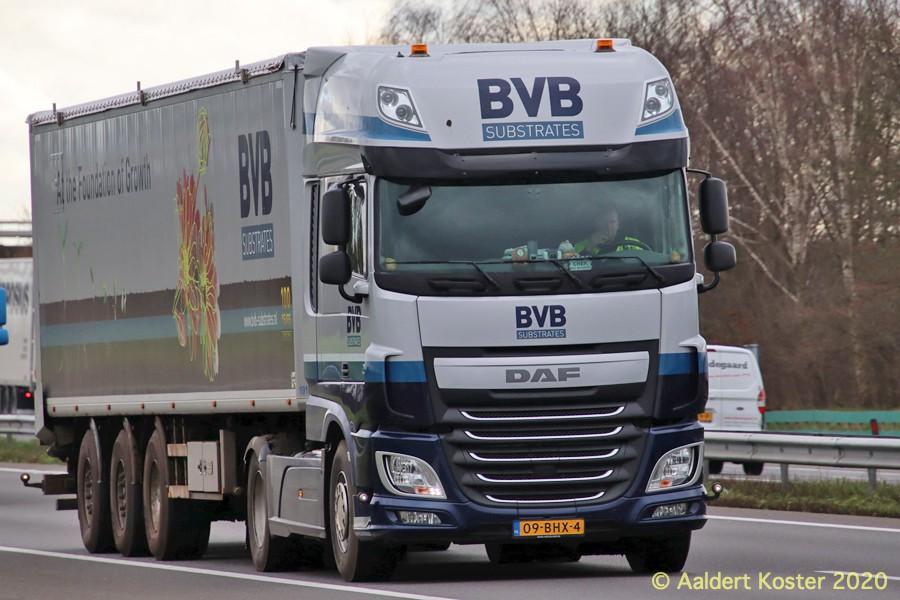 20200904-BVB-00012.jpg