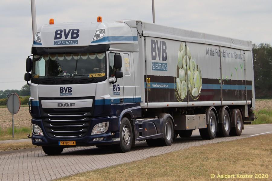 20200904-BVB-00016.jpg