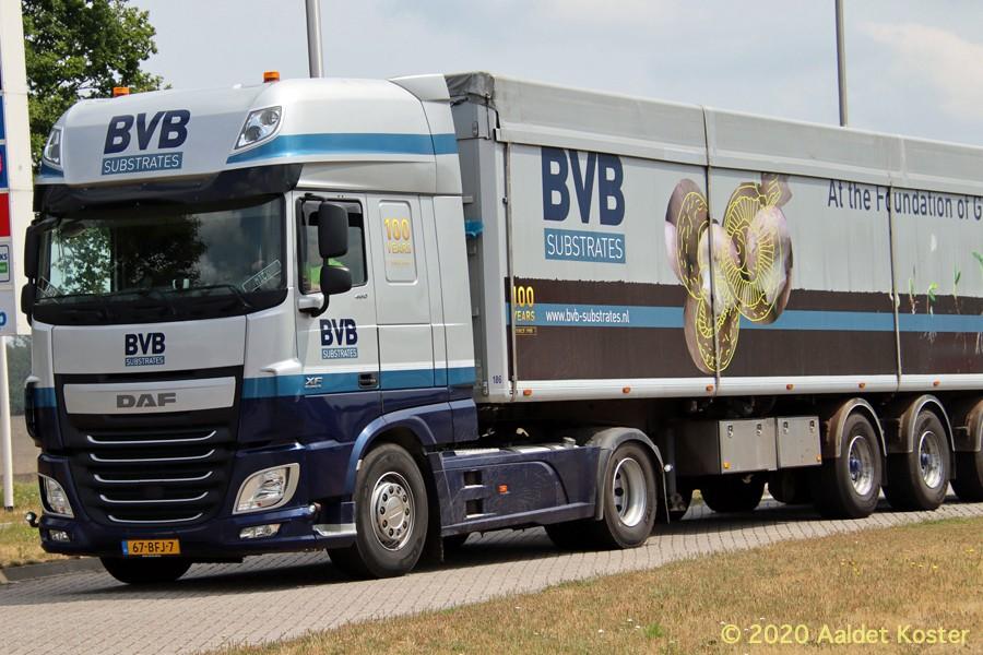 20200904-BVB-00019.jpg