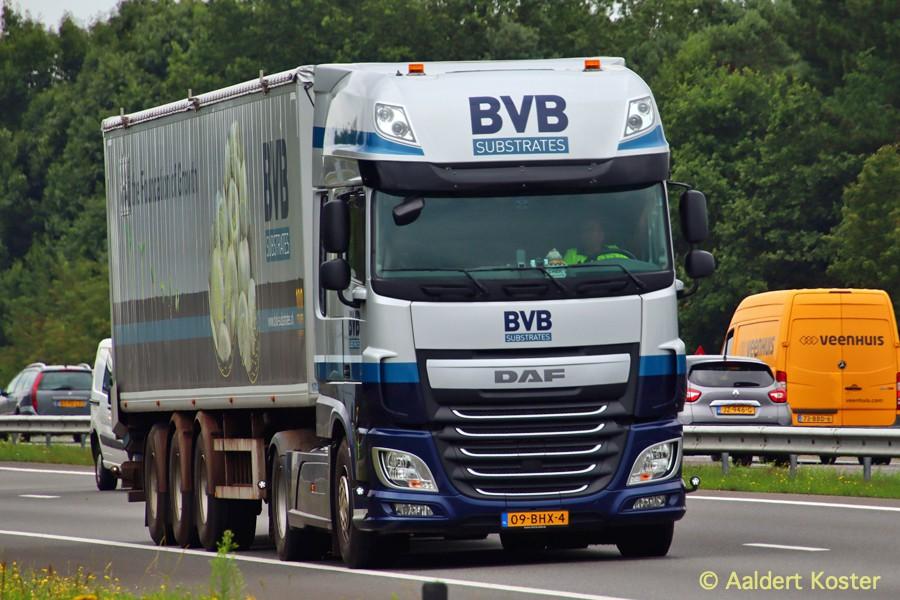20200904-BVB-00022.jpg