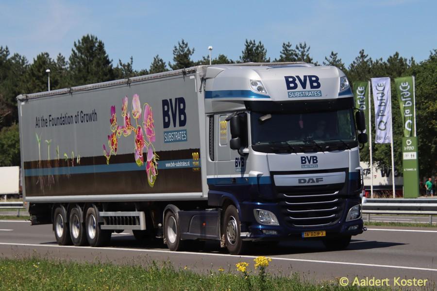 20200904-BVB-00028.jpg