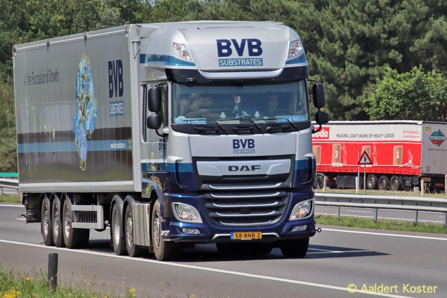 20200904-BVB-00029.jpg