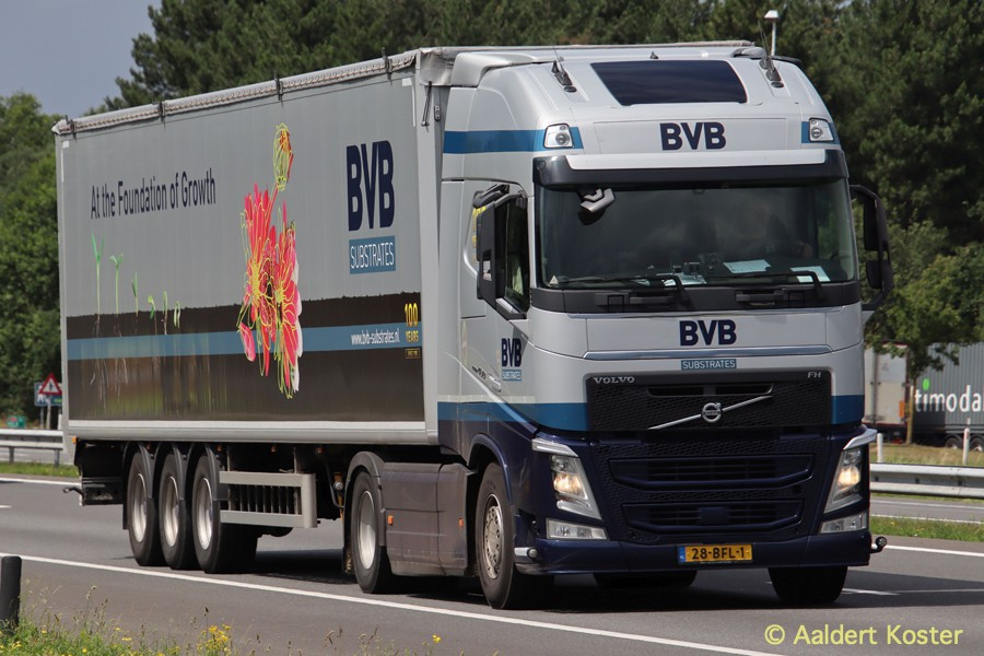 20200904-BVB-00030.jpg