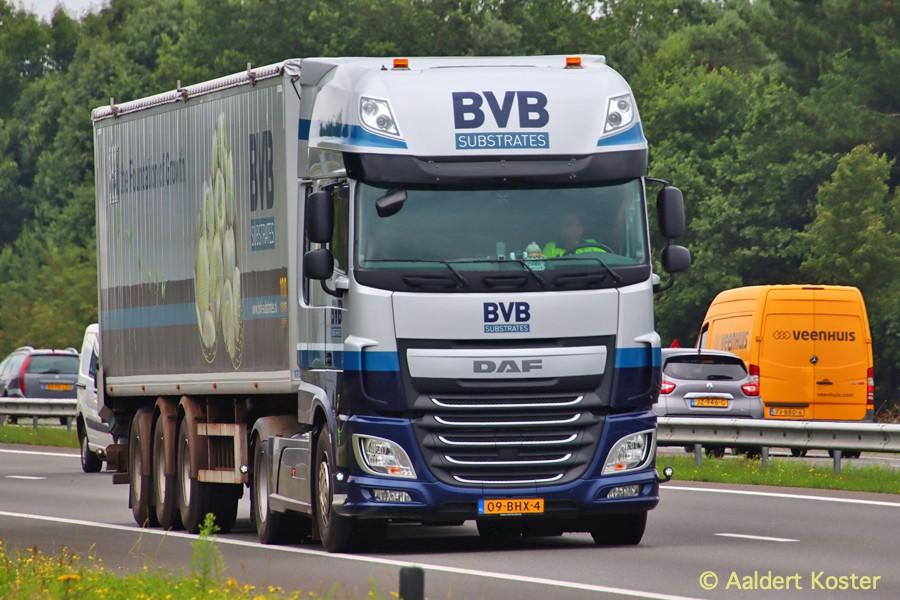 20200904-BVB-00031.jpg