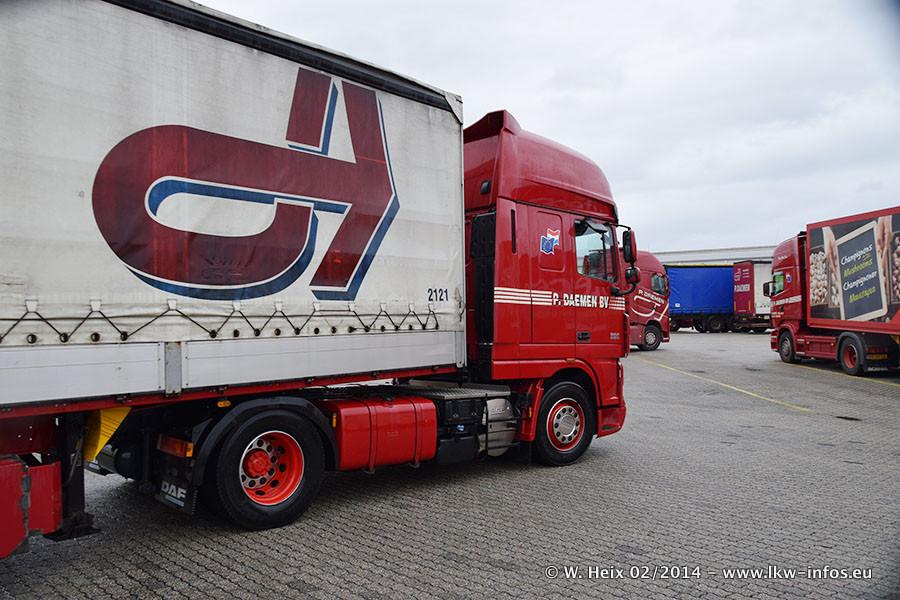 Daemen-Maasbree-20140208-242.jpg