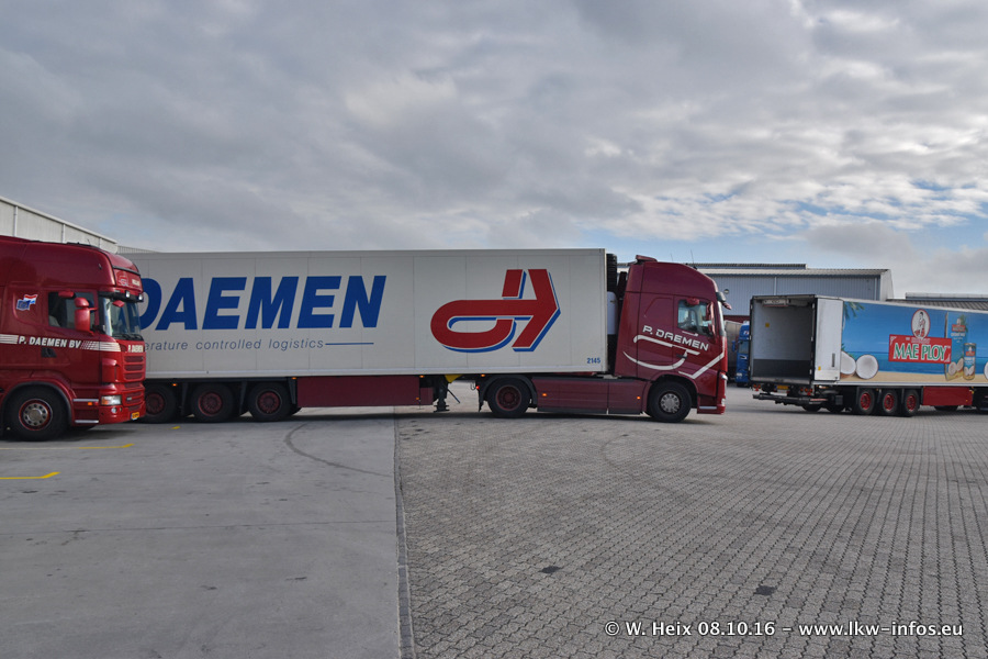 Daemen-20161008-00284.jpg