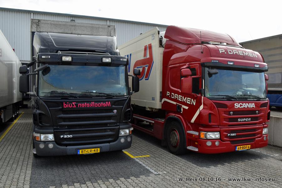 Daemen-20161008-00349.jpg