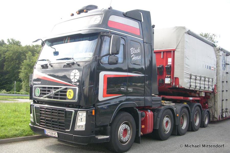 Volvo-FH16-660-Fluckinger-Mittendorf-101011-07.jpg