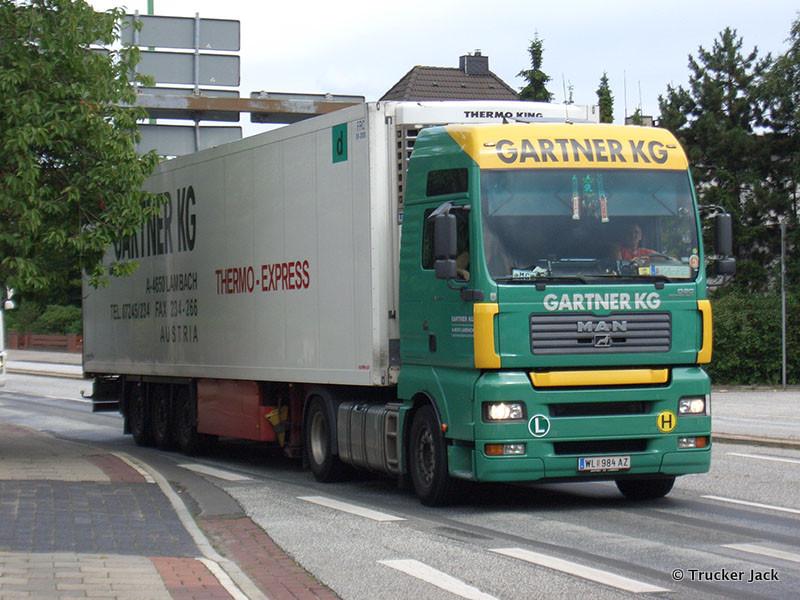 Gartner-DS-101112-001.jpg
