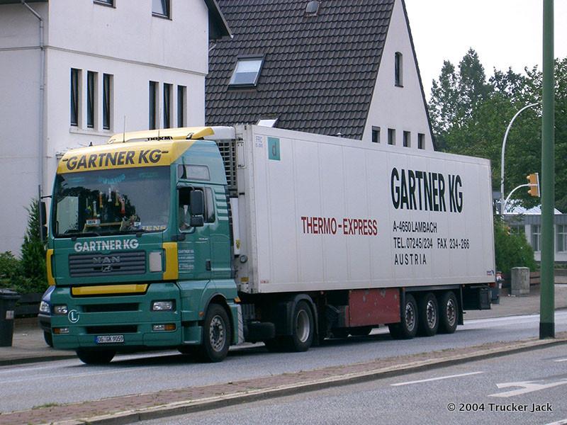 Gartner-DS-101112-012.jpg