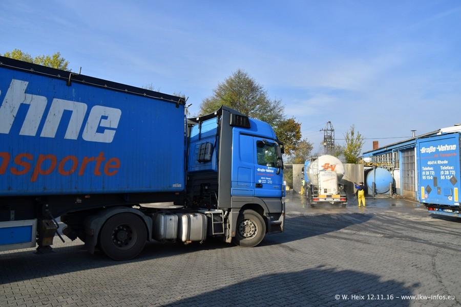 Grosse-Vehne-Rhede-20161112-00046.jpg