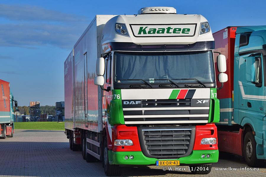 Kaatee-20141102-003.jpg