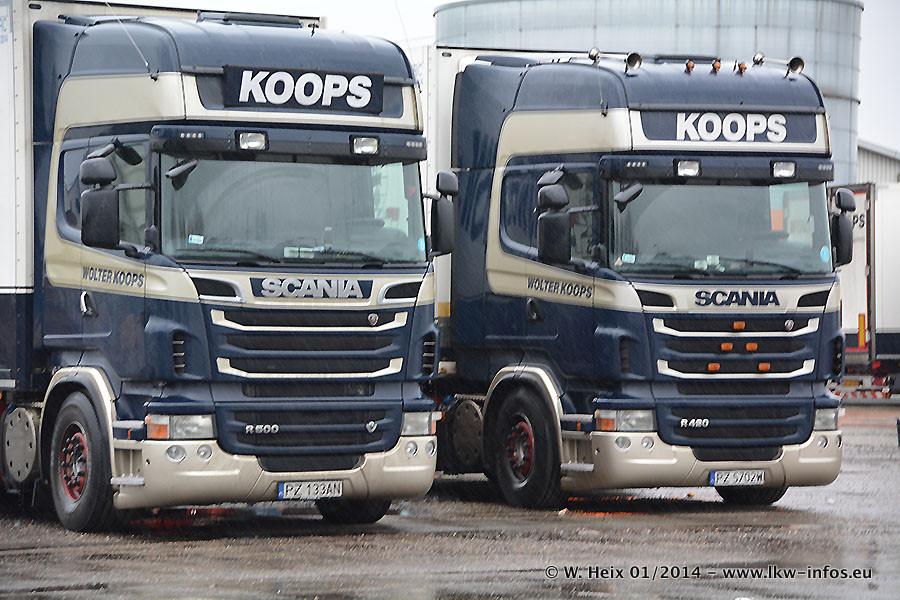 Koops-20140202-005.jpg