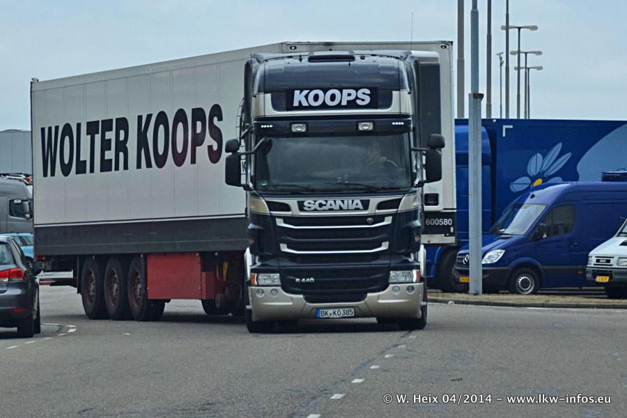 Koops-20140420-001.jpg
