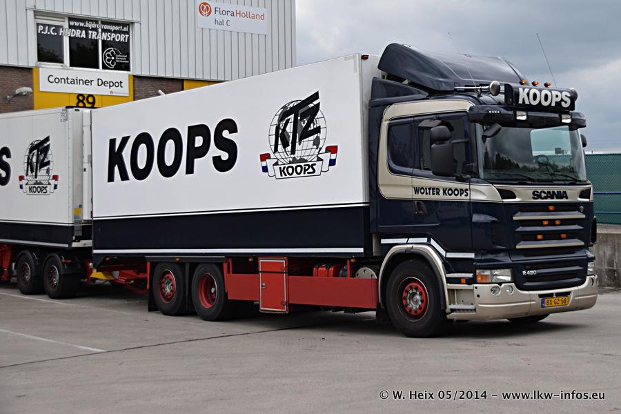 Koops-20140502-001.jpg