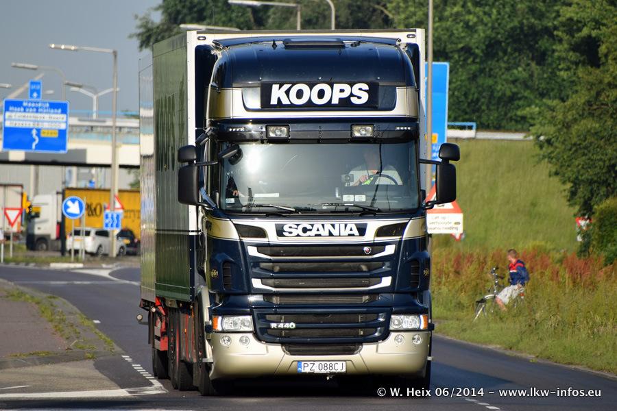 Koops-20140607-001.jpg