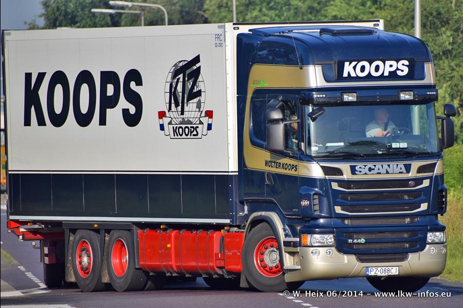 Koops-20140607-002.jpg