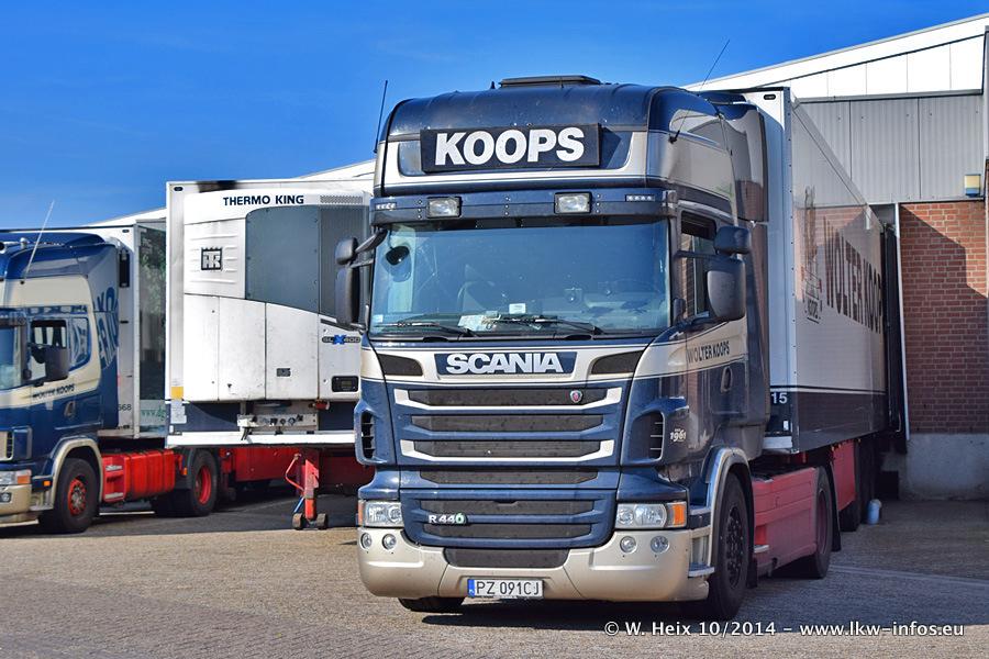 Koops-20141004-002.jpg