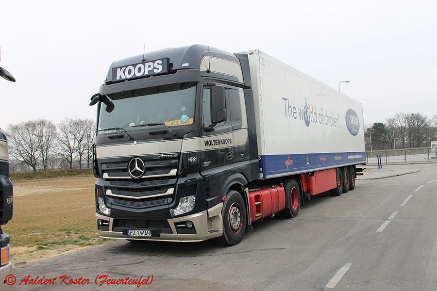 Koops-Koster-20130823-001.jpg