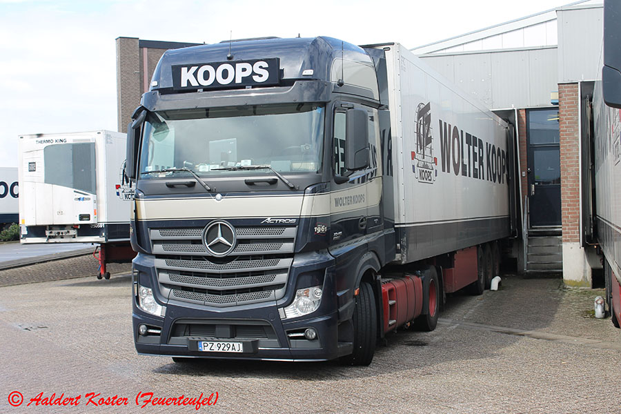Koops-Koster-20130823-003.jpg