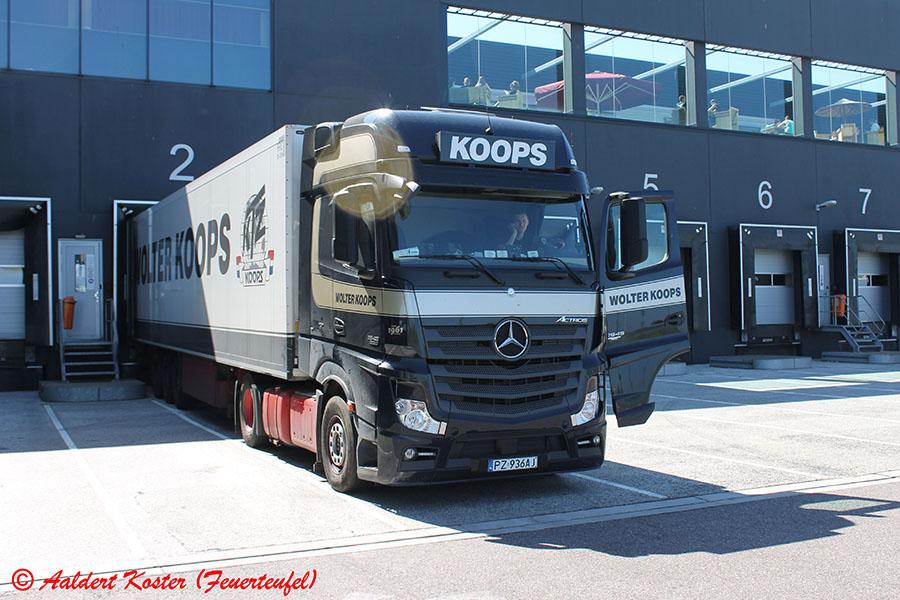 Koops-Koster-20130823-004.jpg