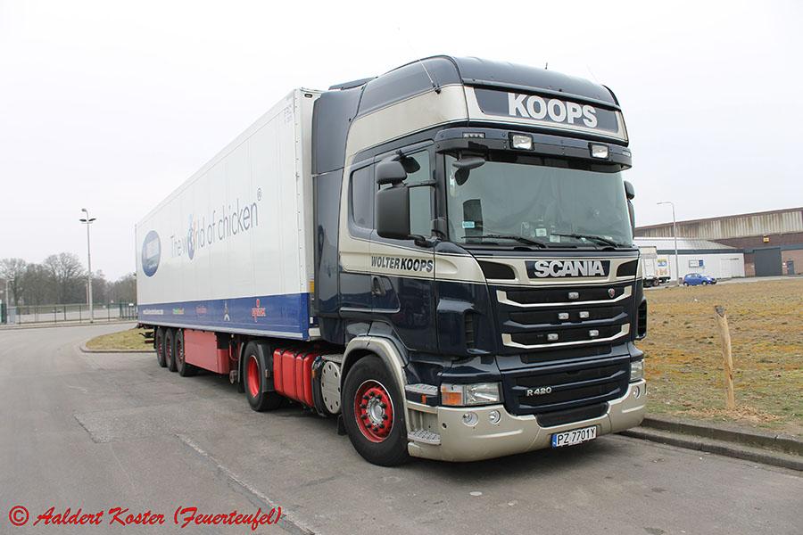 Koops-Koster-20130823-013.jpg