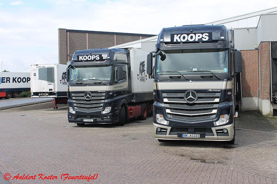 Koops-Koster-20130830-006.jpg