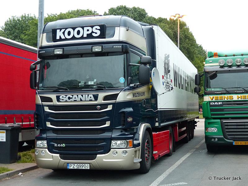 Koops-20150703-002.jpg