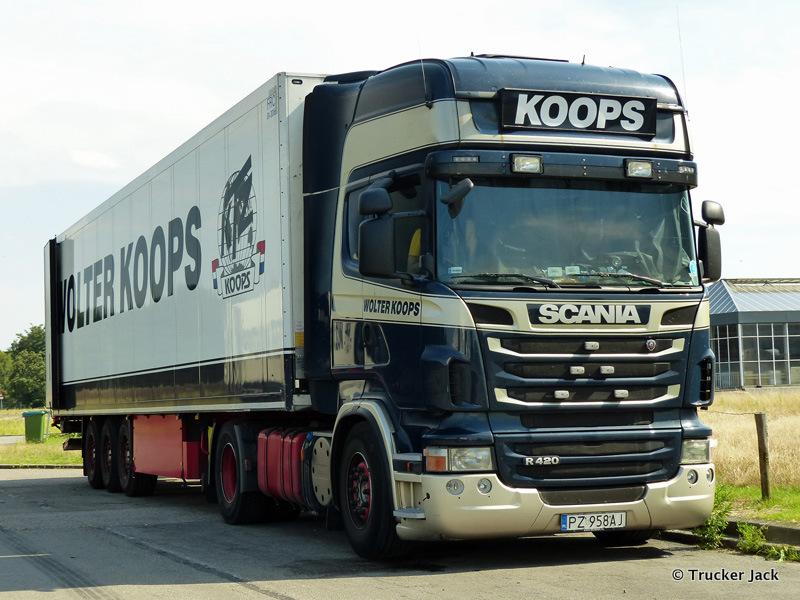 Koops-20151101-021.jpg