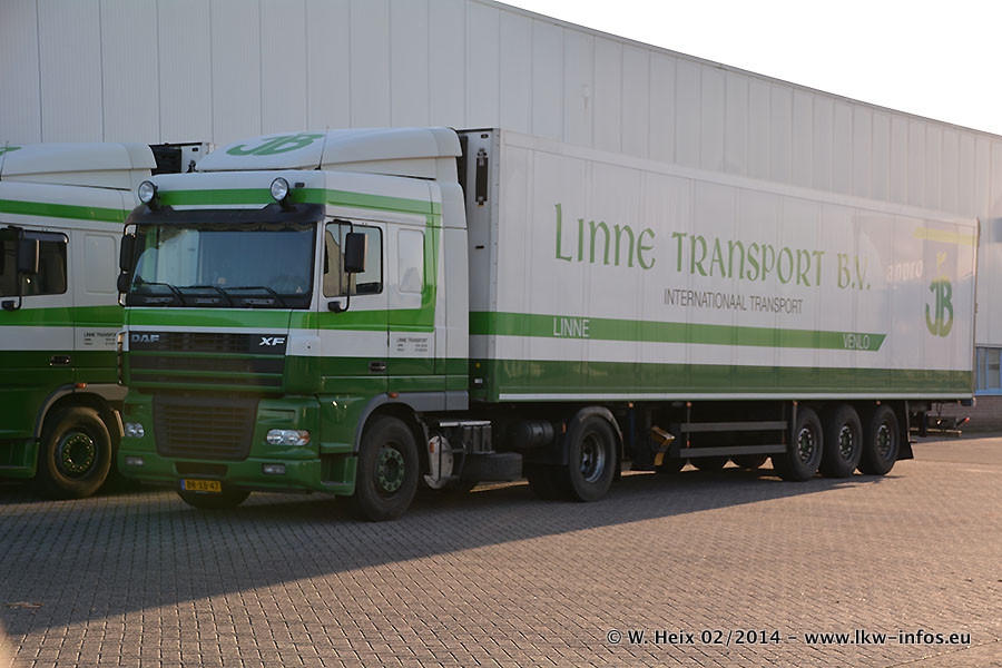 Linne-20140202-011.jpg