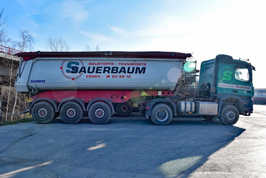 20180224-Sauerbaum-00007.jpg
