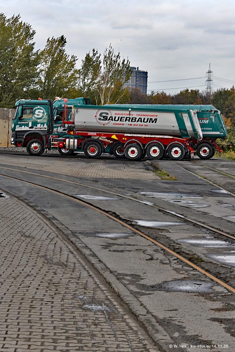 202011114-Sauerbaum-00451.jpg