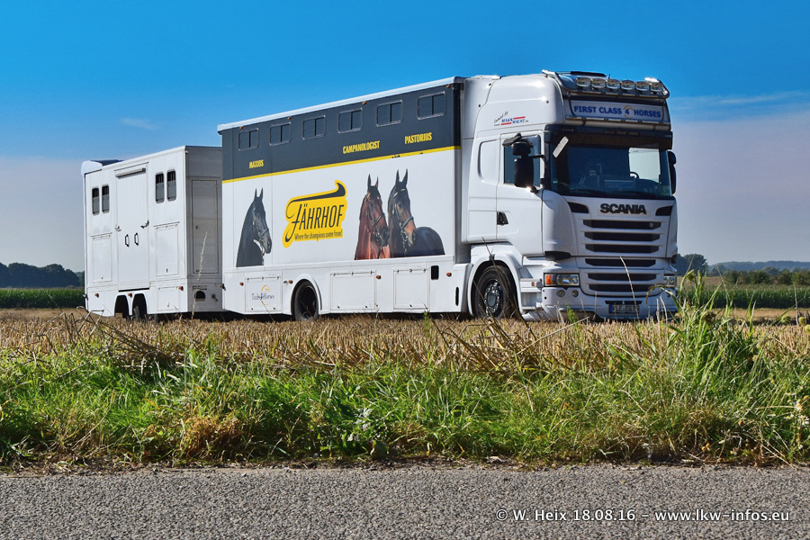 Taxi4Horses-Uedem-20160818-00055.jpg
