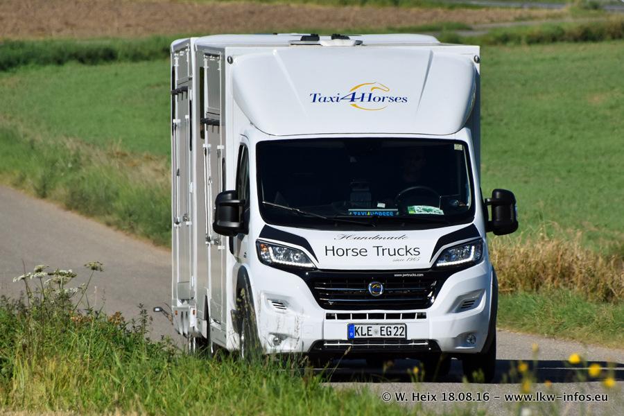 Taxi4Horses-Uedem-20160818-00138.jpg