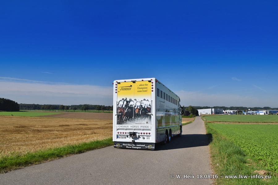Taxi4Horses-Uedem-20160818-00252.jpg