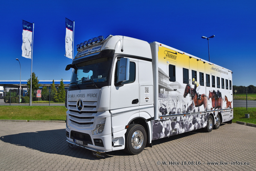 Taxi4Horses-Uedem-20160818-00259.jpg